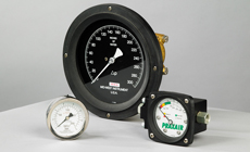DP and Pressure Gauges