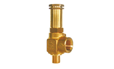 Type 06001: Safety Valve