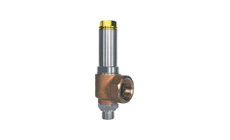 Type 06386: Safety Valve