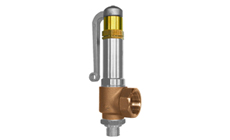 Type 06416: Safety Valve