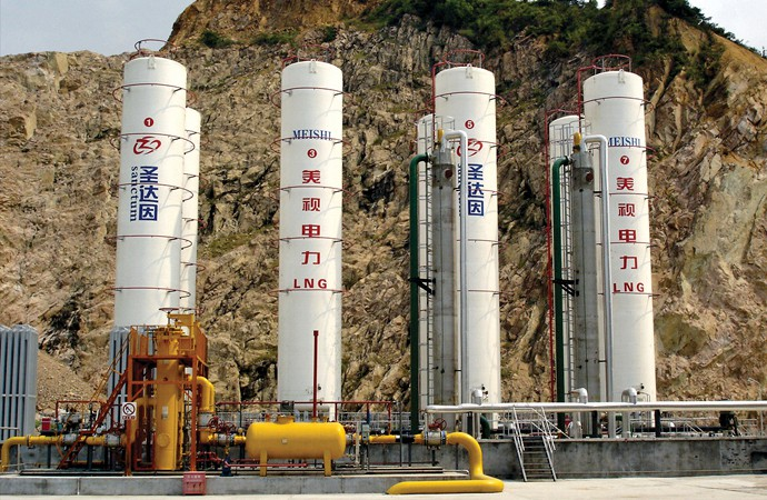 Intestines, appendages and LNG valves in China